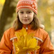 Royalty-Free Stock Photo: Girl with yellow maple leaves
