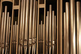 Organ-pipes — Stock fotografie