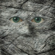 The stoney stare of a rock face - Stock Photo