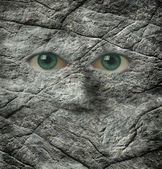 The stoney stare of a rock face — Stock Photo