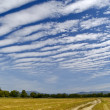 Striped clouds over the cleaned wheaten field — ストック写真
