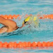 Gala swimmer - Stock Photo