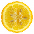 Lemon slice - Foto Stock
