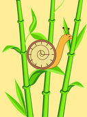 Clock snail on bamboo — Stock Vector