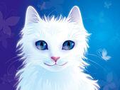 White cat — Stock Photo