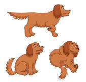 Cartoon dogs — Stock Vector