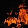 Royalty-Free Stock Photo: Wild fire