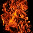 Wild fire — Stock Photo #5374436