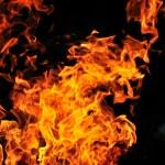 Wild fire — Stock Photo #5374445