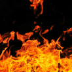 Wild fire — Stock Photo #5374464