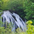 River waterfall wild — Photo