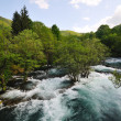 River waterfall wild — Stock Photo