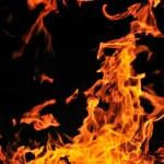 Wild fire — Stock Photo #5379267