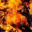 Stock Photo: Wild fire