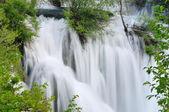 Vahşi nehir şelale — Stok fotoğraf