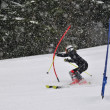 Stock Photo: Ski race