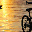 Bike on sunset beach - Stock Photo