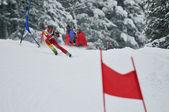 Ski race — Stock Photo