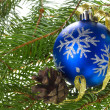 Blue ball and cone on fir tree branches — Stock Photo