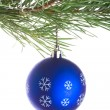 Royalty-Free Stock Photo: Blue ball on pine tree branch
