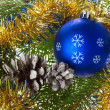 Blue ball and cones on fir tree branches - Stock Photo