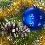 bola azul e cones em galhos de árvore do abeto — Foto Stock