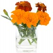Bunch of marigolds in glass — Stock Photo #4115650