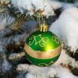 Christmas decoration on fir branch — Stock Photo #4490005