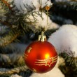 Christmas decoration on fir branch — Stock Photo #4490031