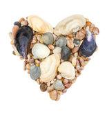 Srdce z mušle a kamenů — Stock fotografie