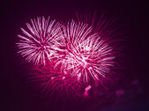 Red fireworks at night — Stock Photo