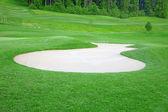 Golf topu — Stok fotoğraf