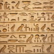 Hieroglyphs carved on the stone — Stock Photo #5245815