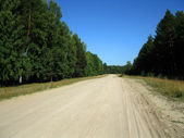 Road, forest and blue sky — Stock Photo