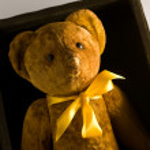 A Teddy — Stock Photo