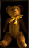 A Teddy — Photo