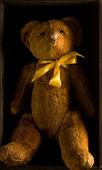 一只泰迪熊 — 图库照片