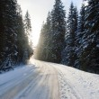 Snow way — Stock Photo #4618078