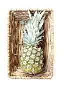 ананас в корзине — Стоковое фото