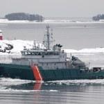 navire de transport dans la mer gelée — Photo