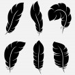 Feathers collection — Stockvektor