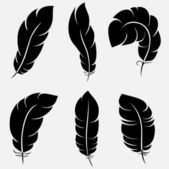 Feathers collection — Stock vektor