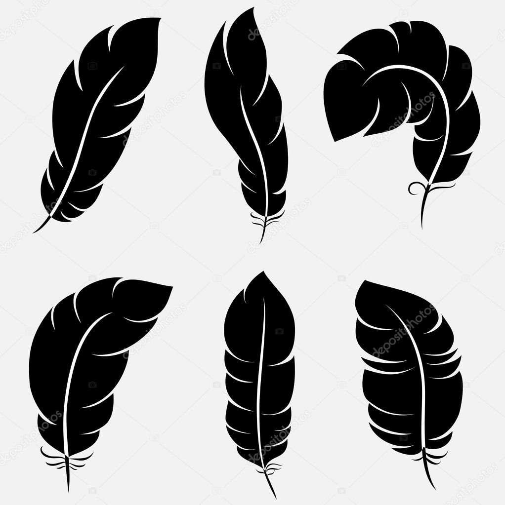 Six elegant feathers for your design and decoration. Vector illustration can be scale to any size and easy to edit.  — Stock Vector #4156363