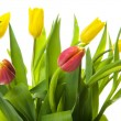 A bouquet of yellow tulips — Stock Photo