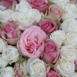 Pink and white wedding bouquet — Zdjęcie stockowe #4556063