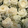 Stock Photo: White roses and Gypsophila/Baby's Breath