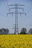 Energii elektrycznej masztu i żółty rzepak — Zdjęcie stockowe