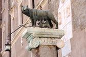 La statua di romul e remo — Foto Stock