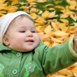 Royalty-Free Stock Photo: Baby at a park in Autumn