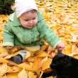 Baby and cat at a park in Autumn — Stockfoto